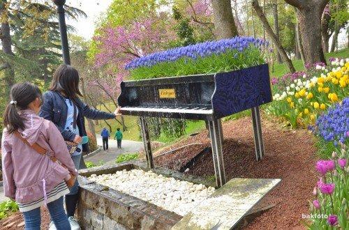 Çiçek notaları ile bezenmiş şelaleli piyano