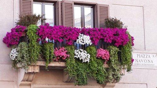 bir balkon
