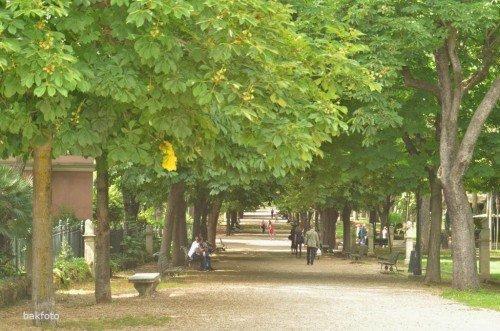 Borghese Parkı- (Burası bir bakıma Central Park gibi bir yer )