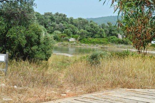 Kedrai antik limanı