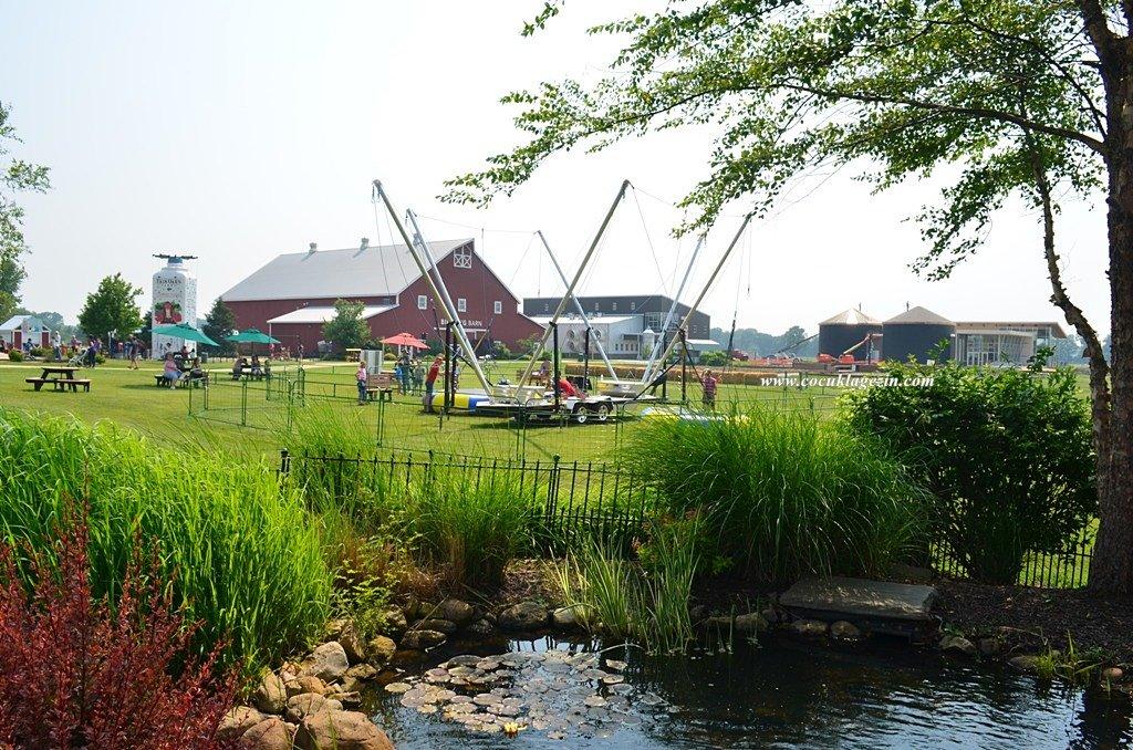 Fair Oaks Çiftliği oyun ve piknik alanları