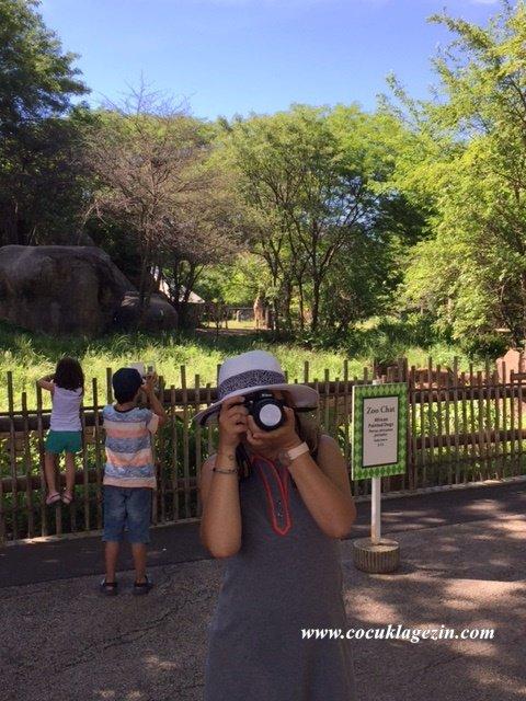 Brookfield Zoo'da aile boyu fotoğraf çekimi zamanı